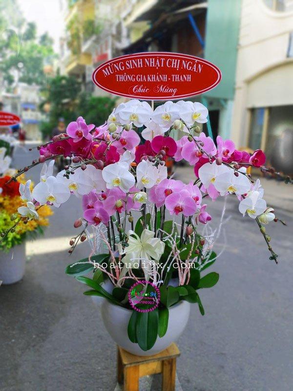 Đặt Hoa Chúc Mừng Khai Trương Giá rẻ tại quận thủ đức