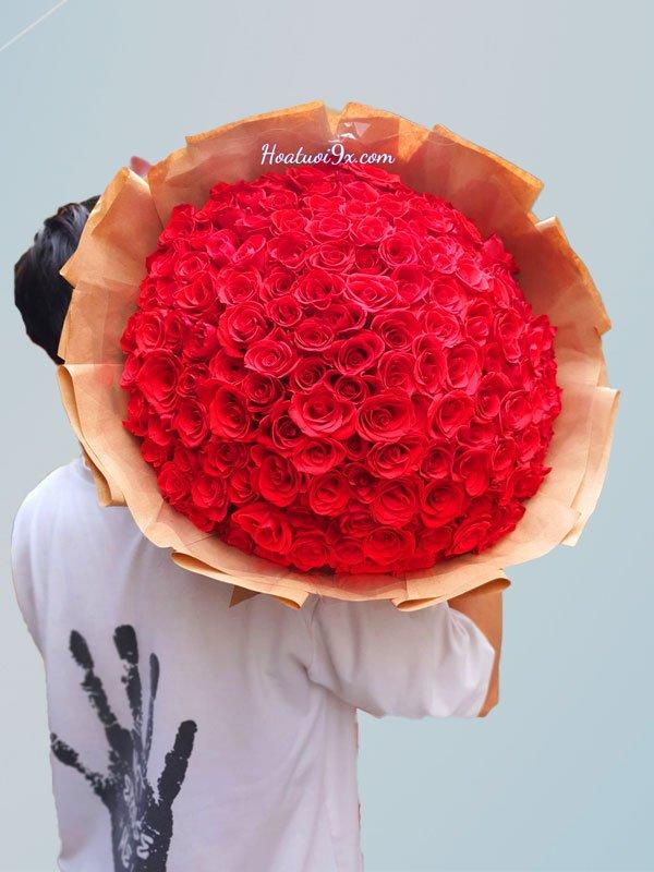 150 Bông Hồng Đỏ P9
