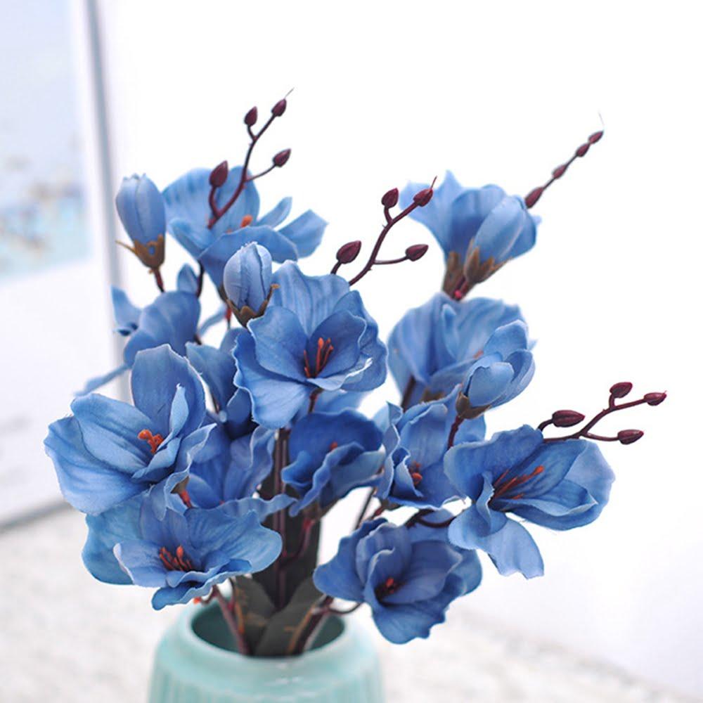 Màu sắc hoa mộc lan nói lên điều gì?