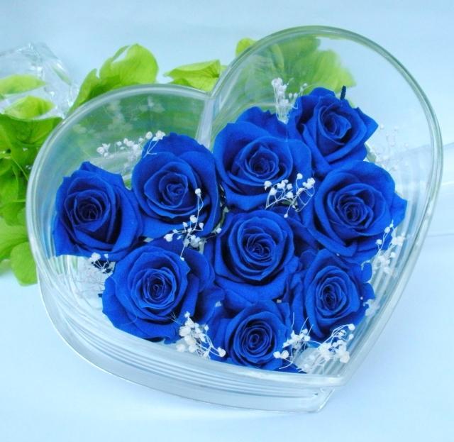 Ý nghĩa của 9 bông hồng