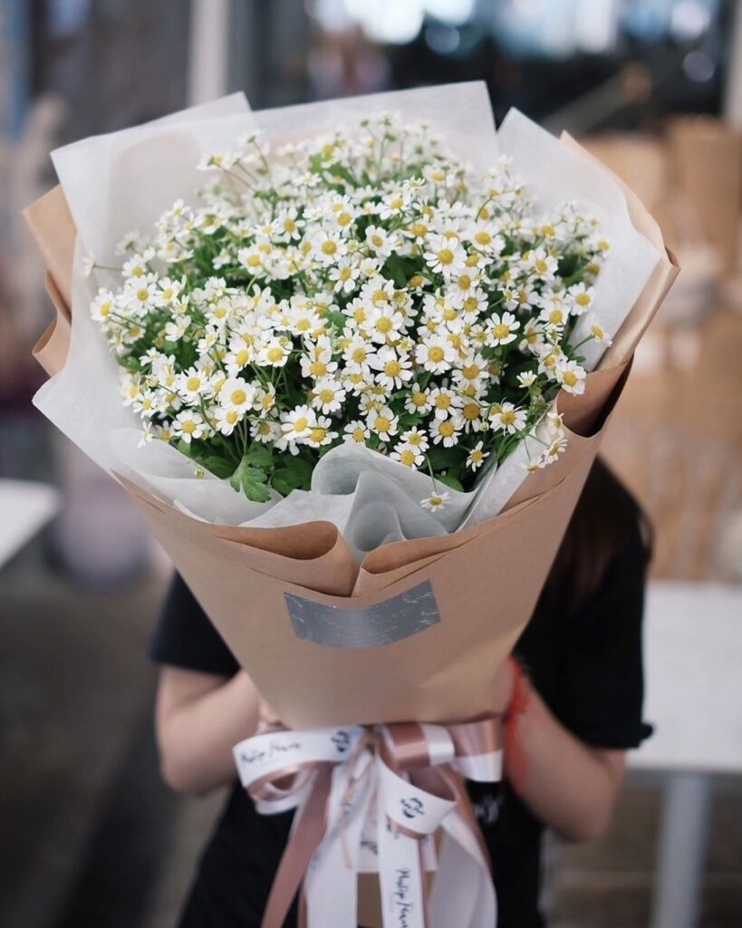Ngôn ngữ hoa cúc họa mi