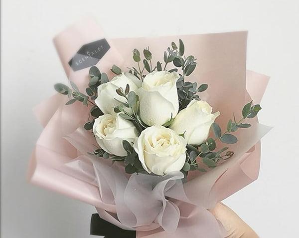 Biểu tượng hoa hồng trắng