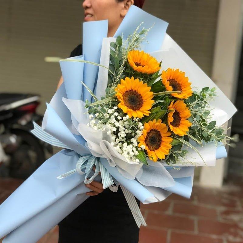 Nét đặc trưng về hoa hướng dương
