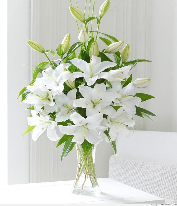 Ứng dụng của cồn hoa huệ trắng trong cuộc sống