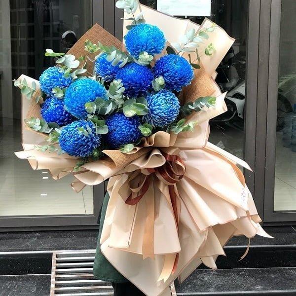 Hoa cúc xanh (xanh dương)