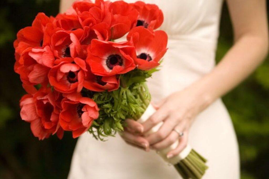 Biểu tượng cây hoa Anh túc