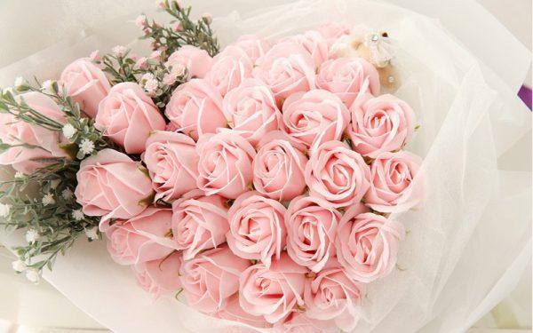Ý nghĩa hoa hồng phấn