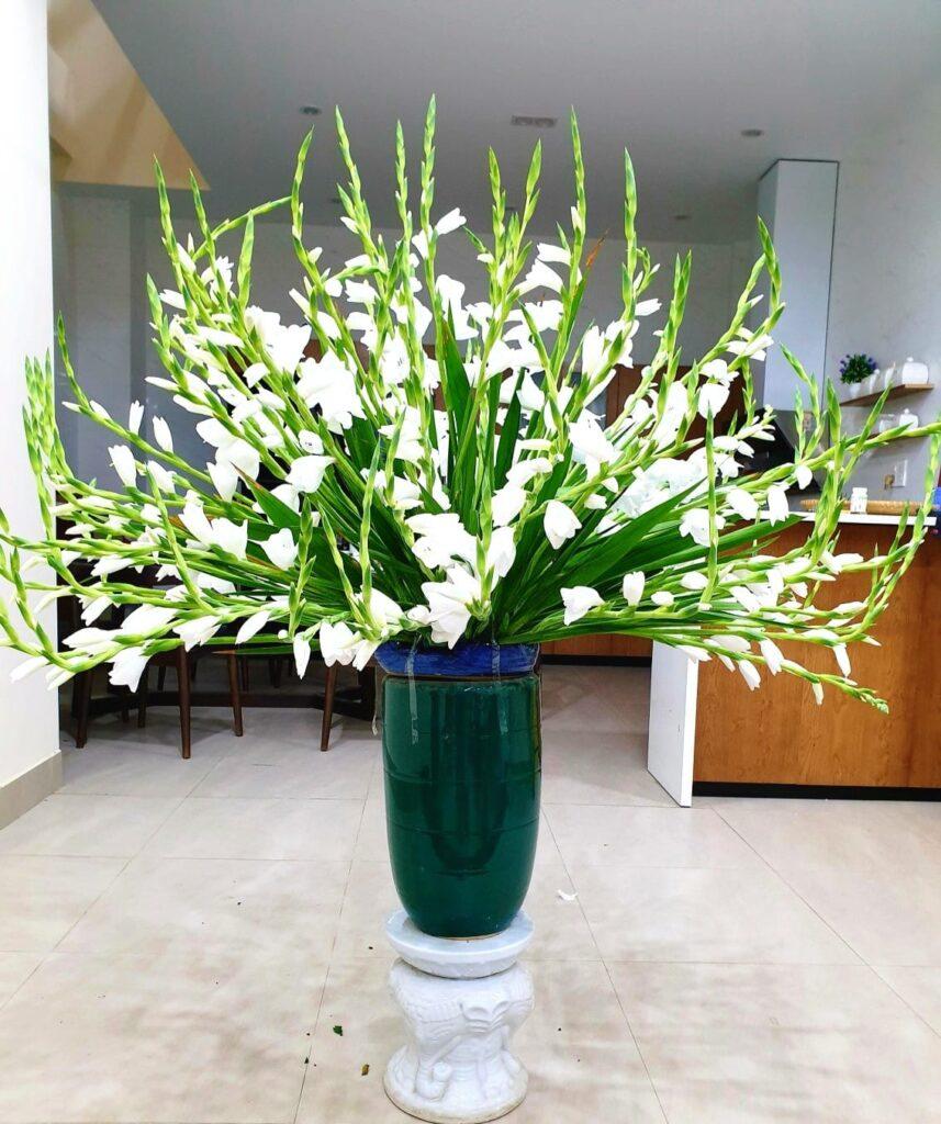 Cách cắm hoa huệ để bàn thờ Tết