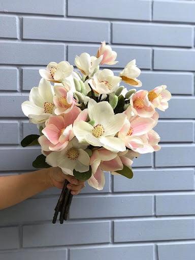 Ý nghĩa của hoa mộc lan