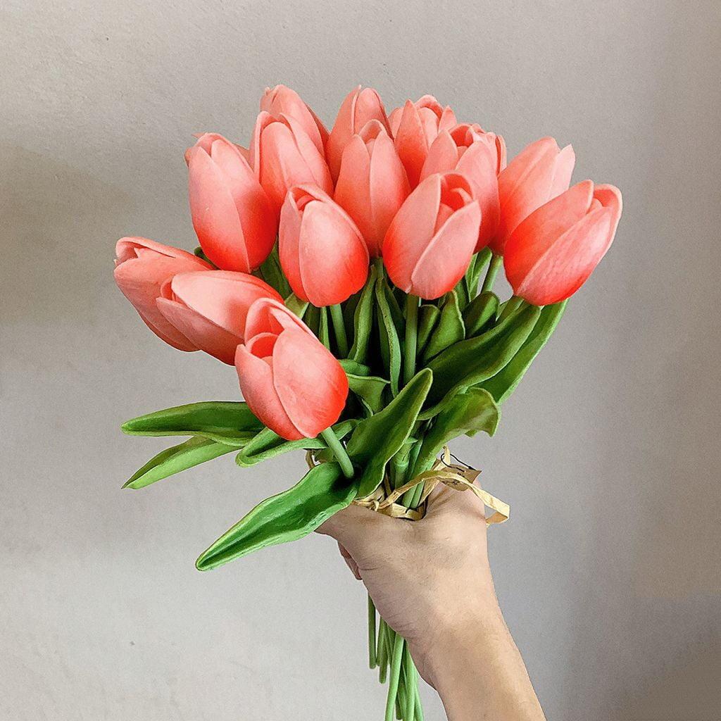 Một số thông tin về hoa tulip