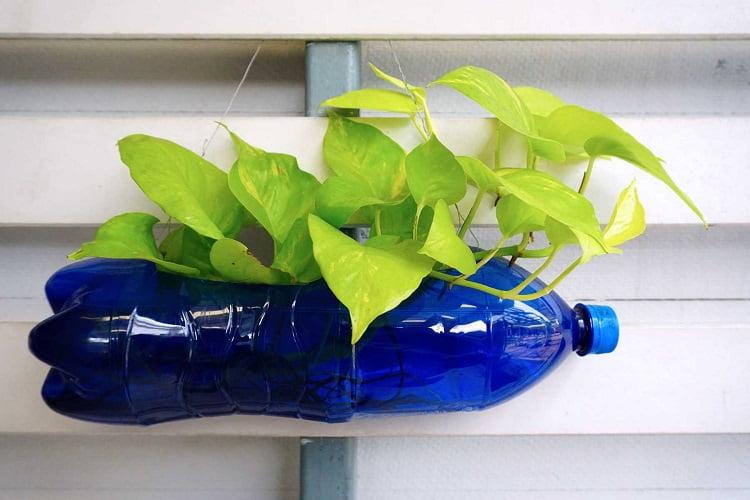 Cách làm chậu hoa từ can nhựa với hình các con vật