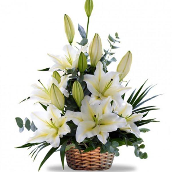Tác dụng của hoa huệ trắng trong thẩm mỹ