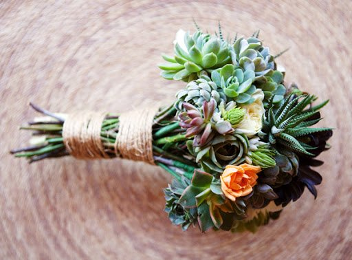 Ý nghĩa về 6 loại hoa mạnh mẽ