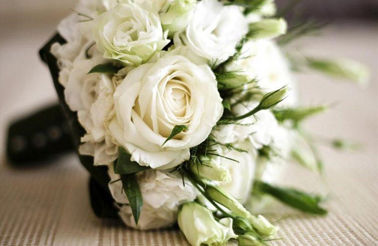 Ý nghĩa của hoa hồng trắng