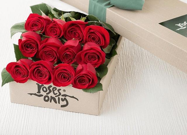 Biểu tượng của hoa hồng