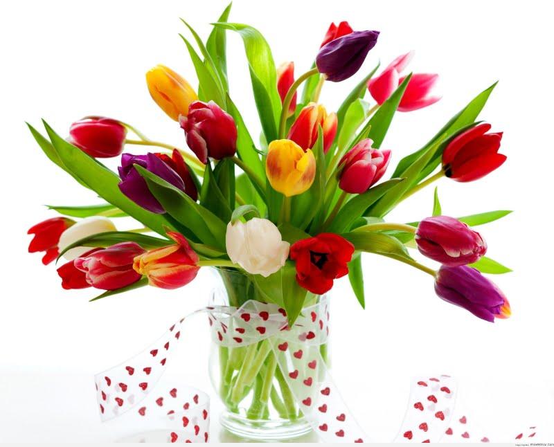 5 cách giúp hoa khai trương tươi mới