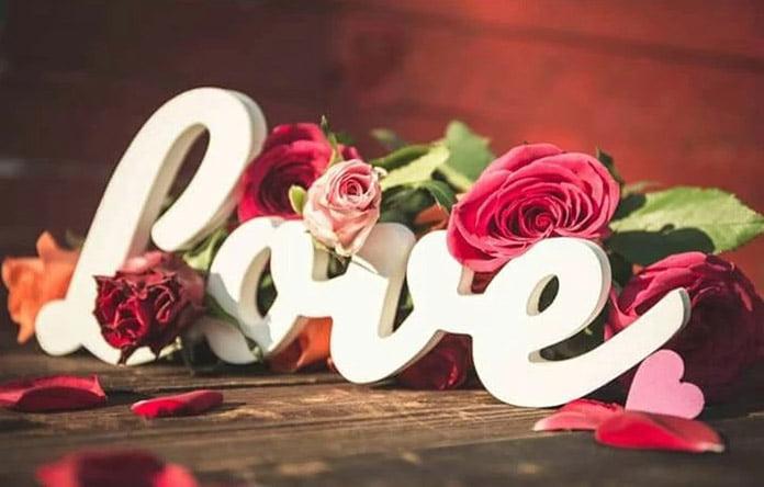 hoa gì tượng trưng cho tình yêu vĩnh cửu