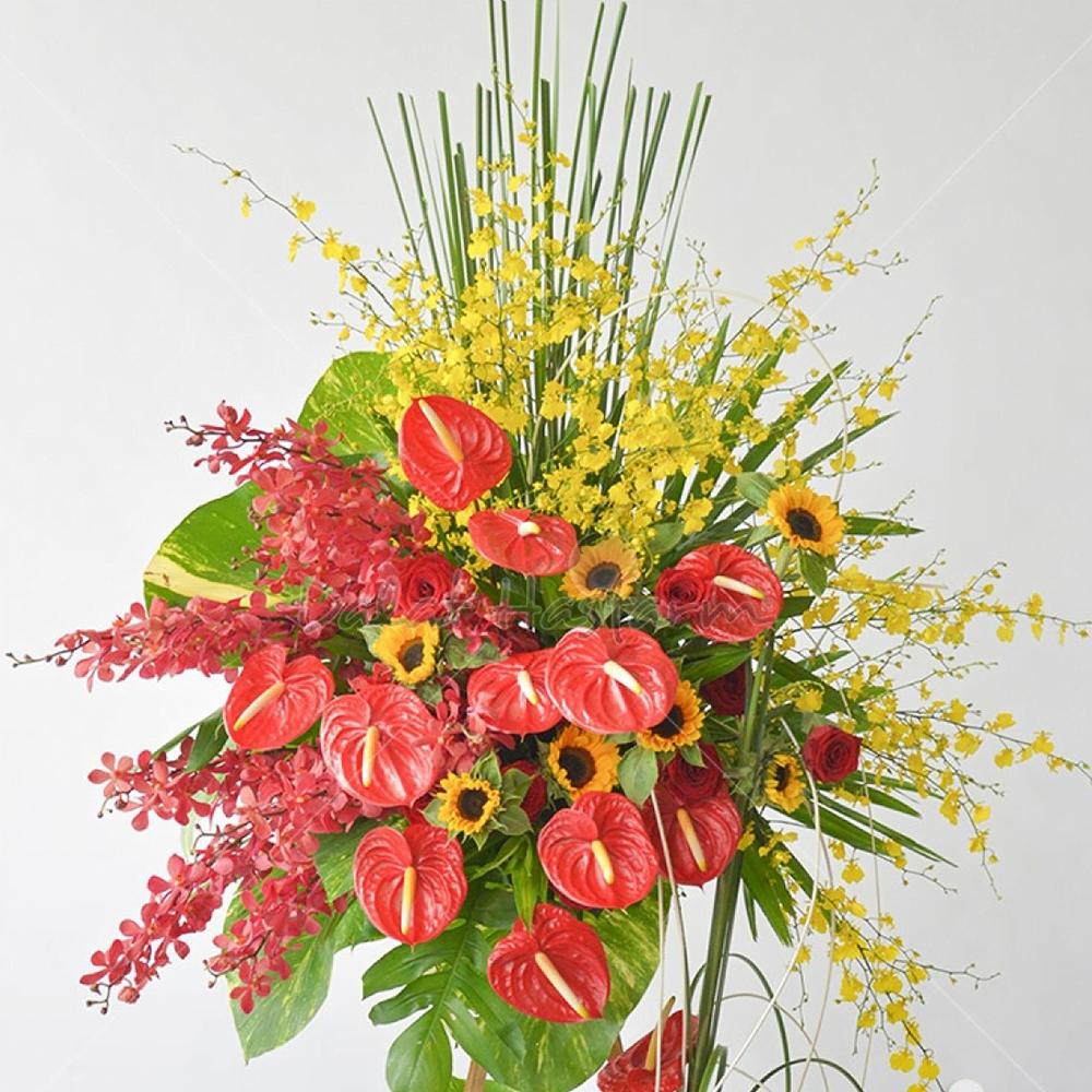 Hoa tươi chúc mừng khai trương giá rẻ - Hoa tươi 9x