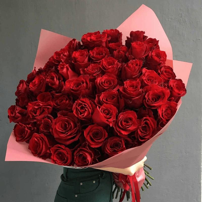 Hoa hồng - Loài hoa tượng trưng cho tình yêu và sắc đẹp