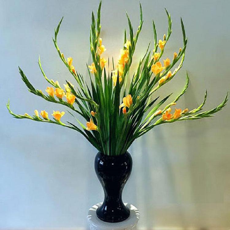 bông hoa đầu tiên cắt khoảng 70cm
