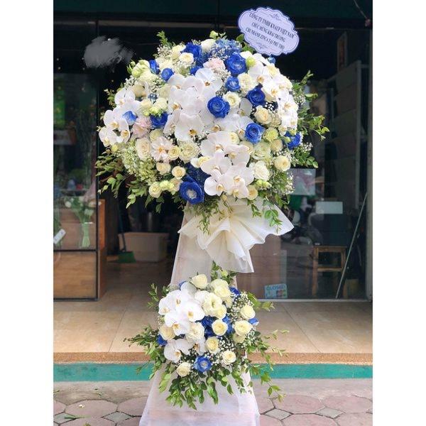 Hoa khai trương màu xanh