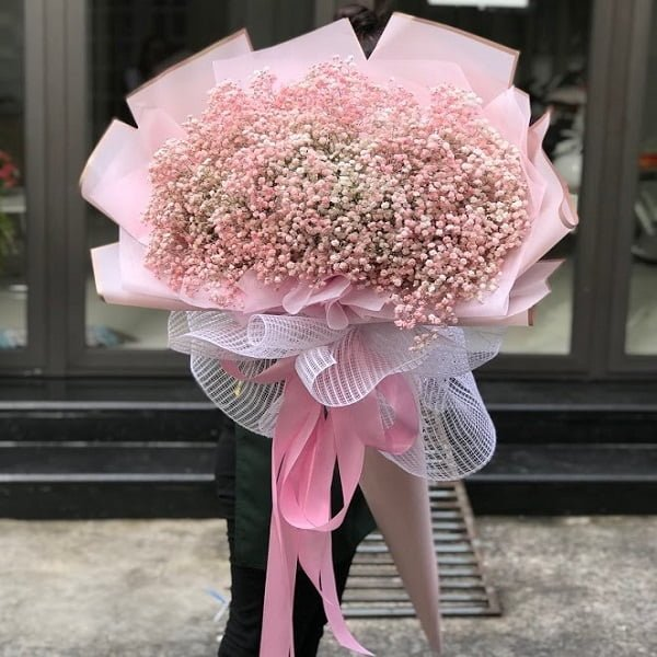 Hoa baby là lời chúc may mắn