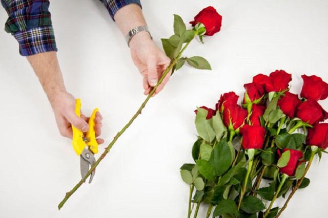 Cắt hoa tươi với độ dài bằng nhau