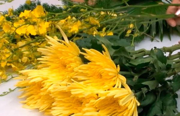 Nguyên liệu đơn giản khi cắm hoa cúc vàng và lan vũ nữ