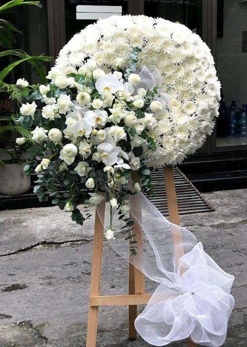 Vào hoa lan Thái trắng