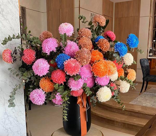 Màu hoa cho nữ trẻ - tuổi trung niên