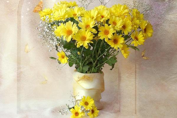 giúp hoa được tươi lâu hơn với tiết diện hút nước rộng