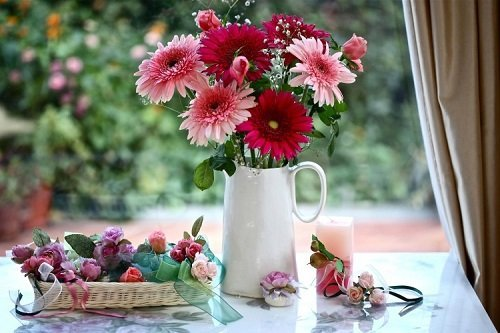 Định hướng lá cho bình hoa