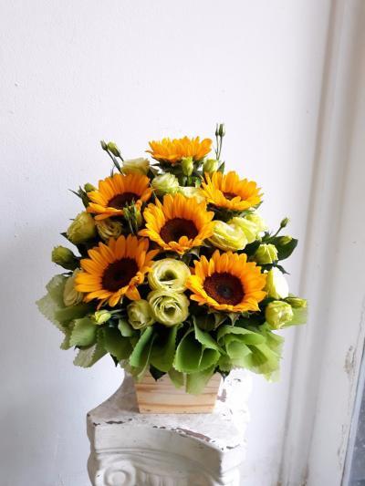 Dùng lá thanh tâm để tạo dáng bình hoa