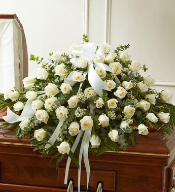 Cắm hoa lan thái trắng