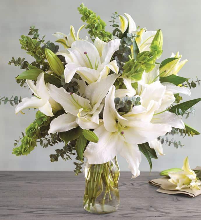 Đo phần bình và giới hạn chiều cao hoa đầu tiên