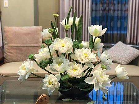 Cách cắm hoa sen trắng đơn giản nhất