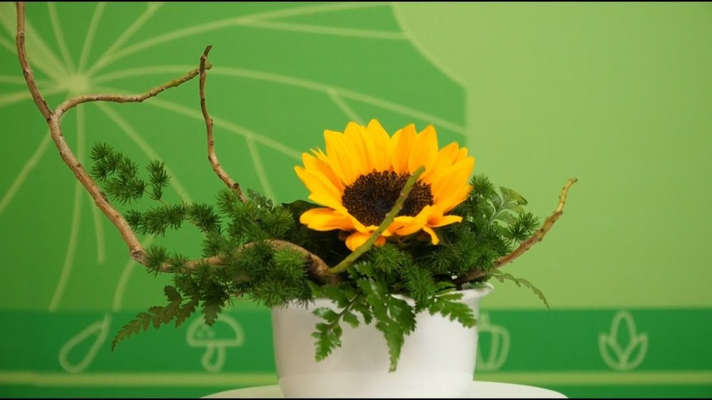 Cắm hoa hướng dương kiểu dáng nghiêng