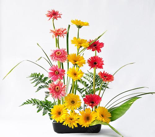 Nguyên liệu cắm hoa chúc mừng khai trương trong phòng làm việc